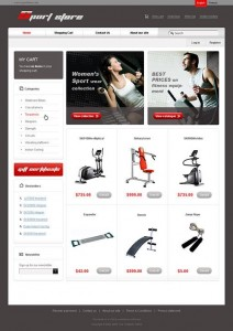 developing ecommerce website